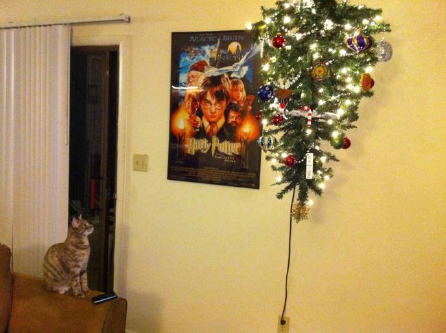 cat christmas tree 2