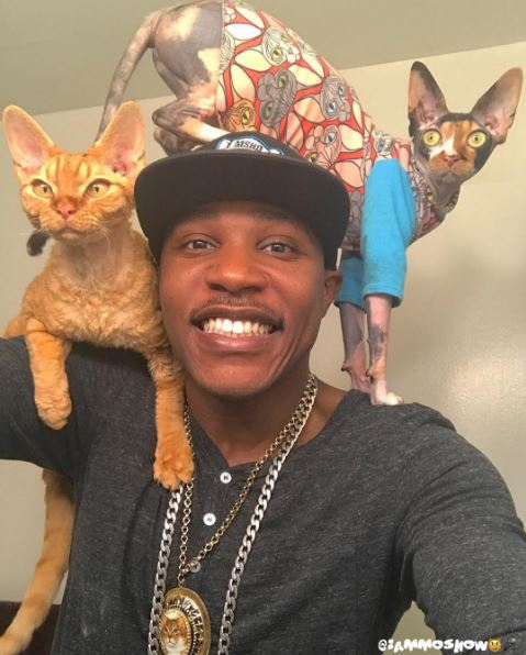 moshow the cat rapper 1