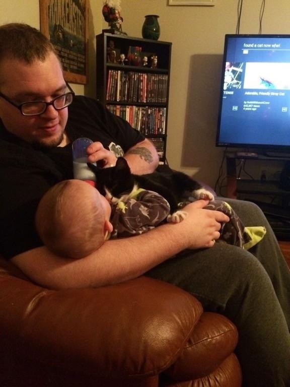 doug the kitten snuggling with rowan