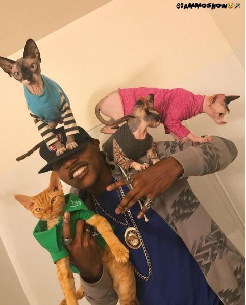 mosho the cat rapper 4