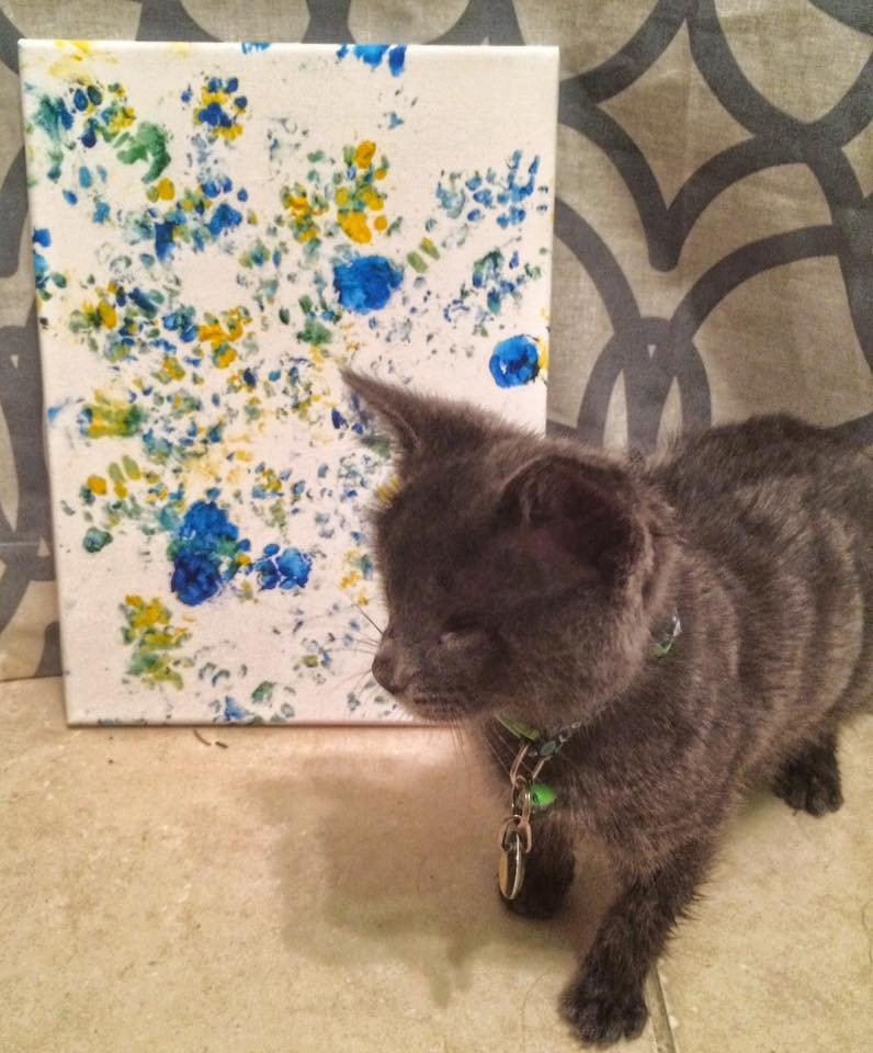 lemon the kitten finger painting
