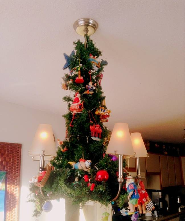 6 cat proof christmas trees to try out during the holidays Christmas tree cat tower