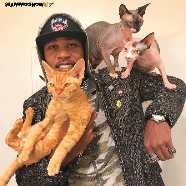 moshow the cat rapper 2