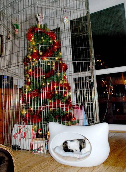 cat christmas tree 3