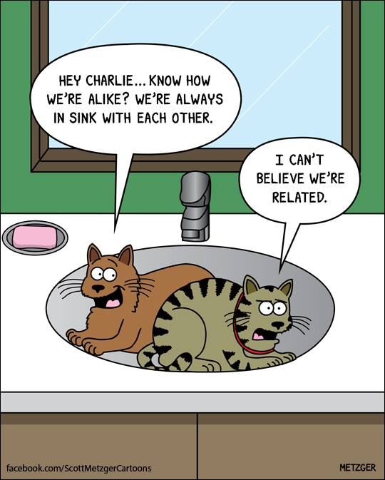 26 Adorably Funny Cat Cartoons That Will Get You Through