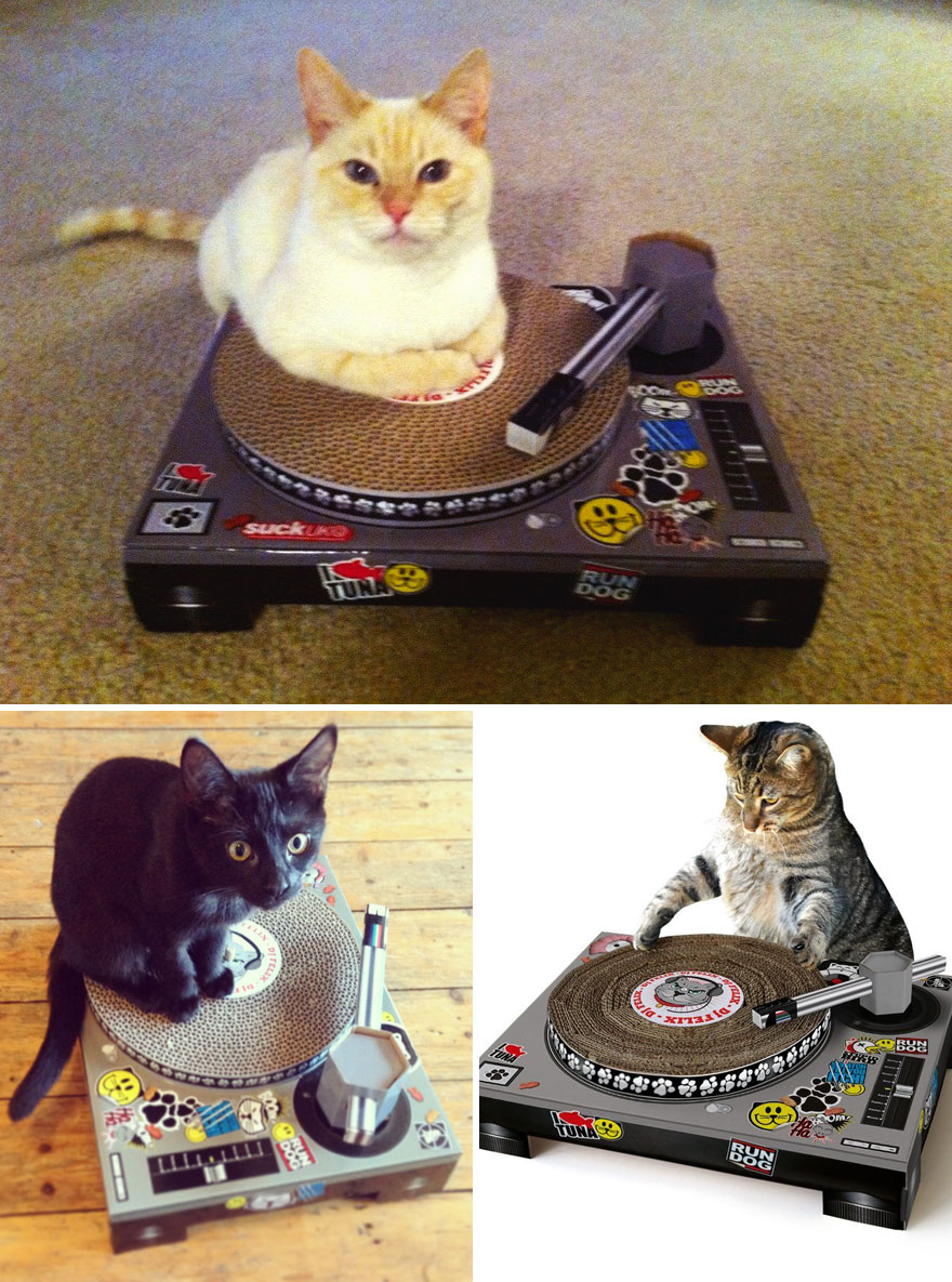 dj scratching post