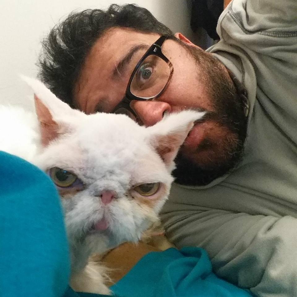 sinbad the cat 7