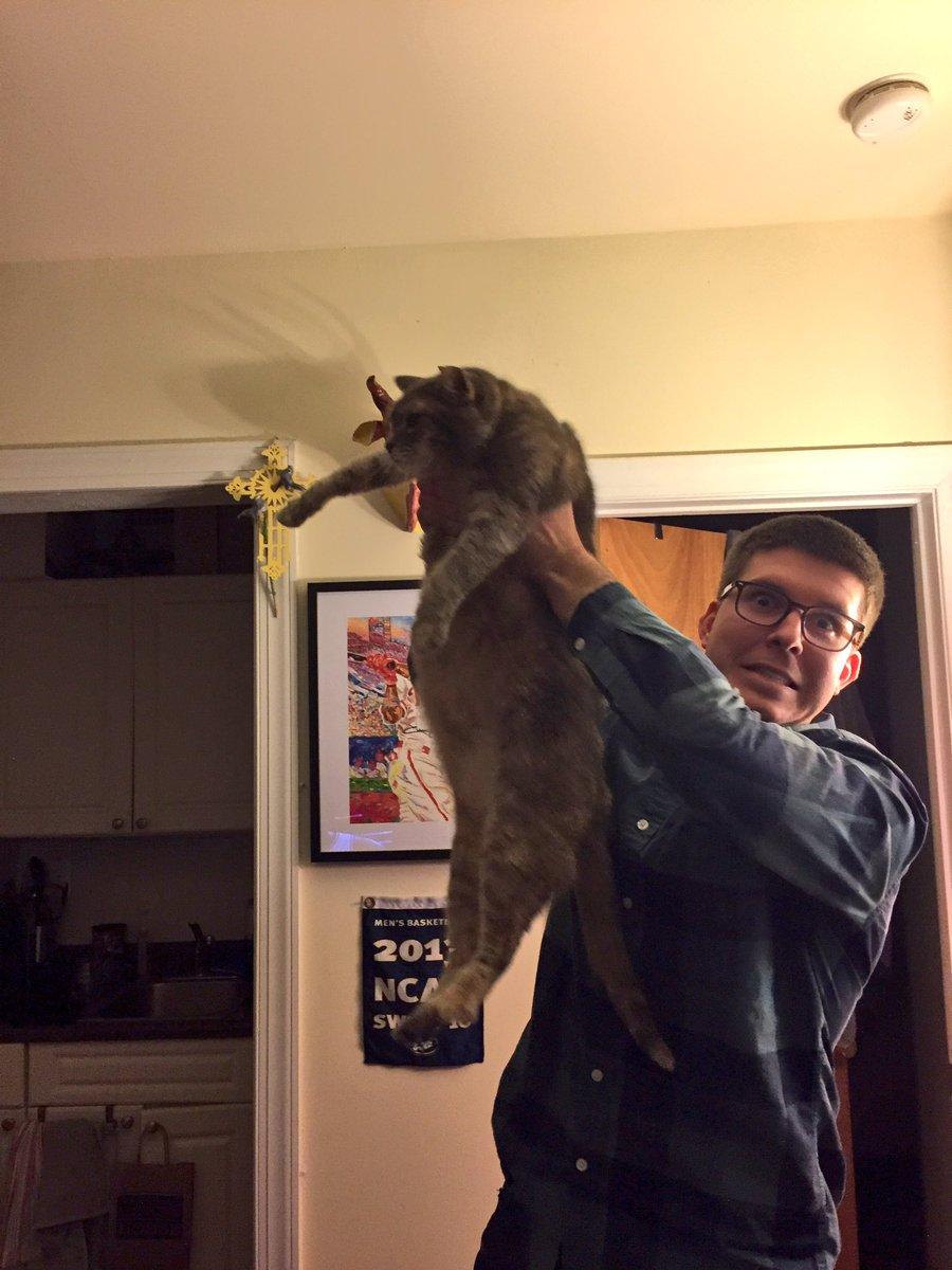 raise cat 2
