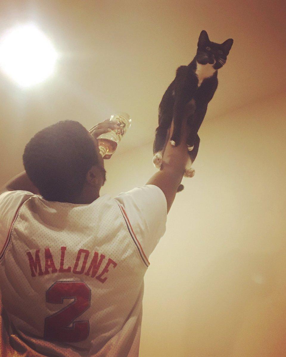 raise cat 5