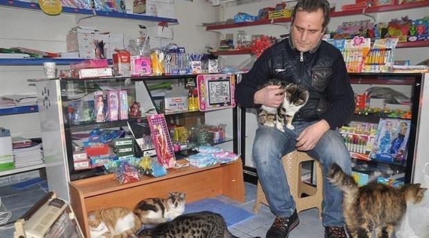 bayal and his shop cats