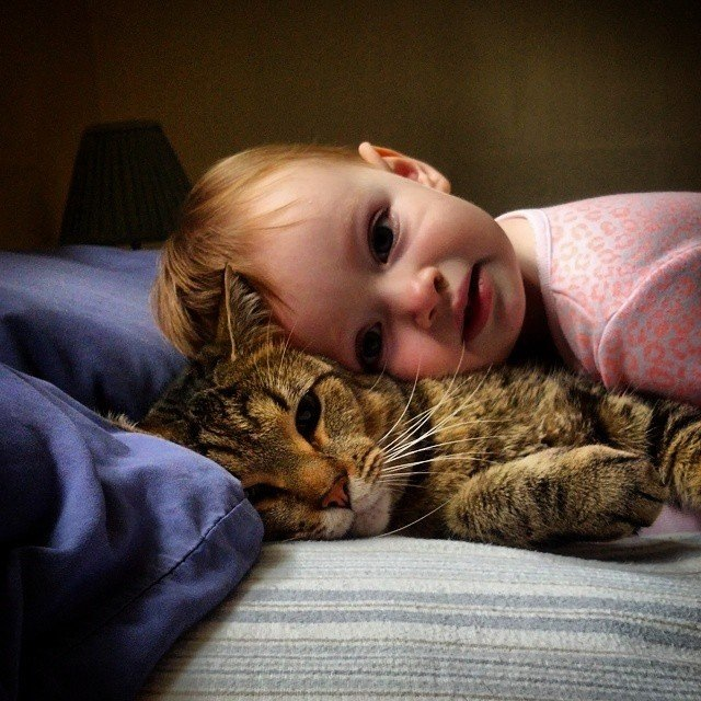 kitty with kids