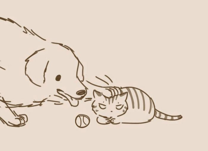 Dogs And Cats By Lynol
