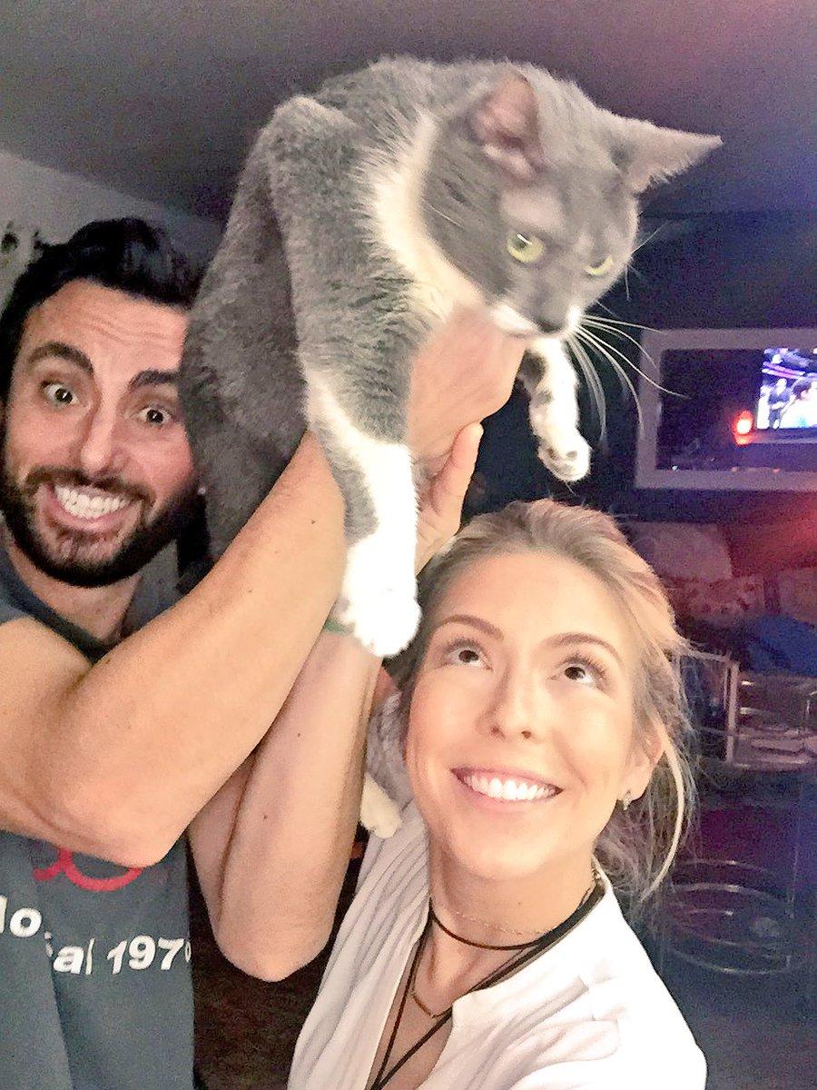 raise cat 6