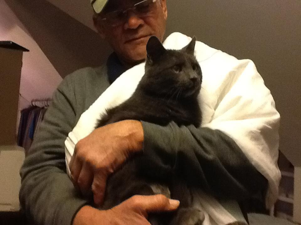 willie and his cats 1