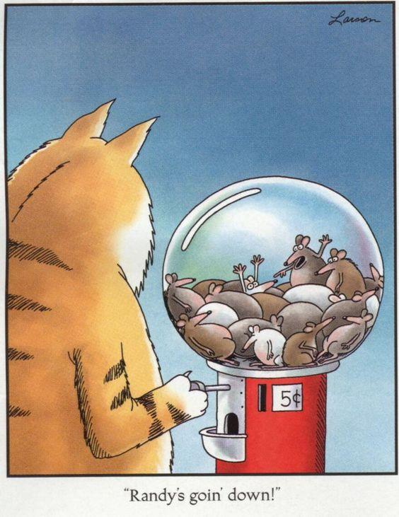 far side cat comic 7