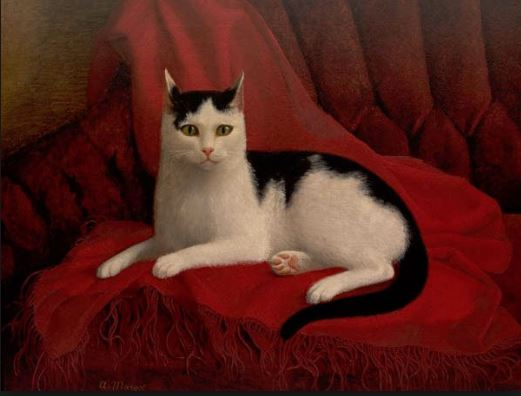 bartons cat