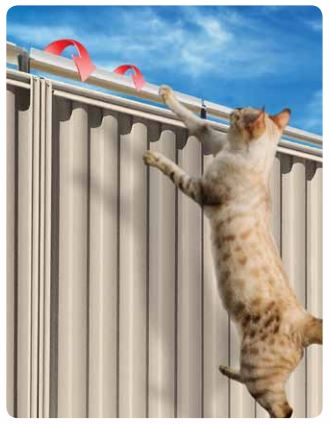 Revolutionary Cat Fence Will Let Your Cats Enjoy The