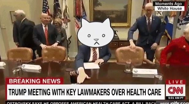 kvo38 trumpcattitle somebody replaced trump's head with a cat and it's the best thing ever