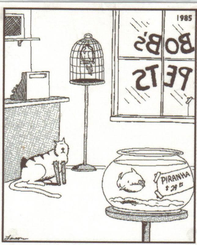 far side cat comic 11