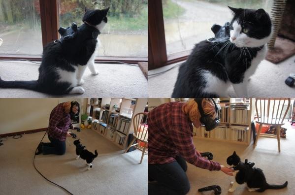 cat vr prototypes