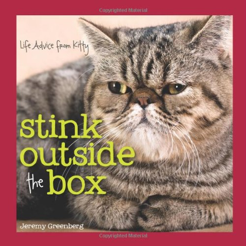 stink outside the box
