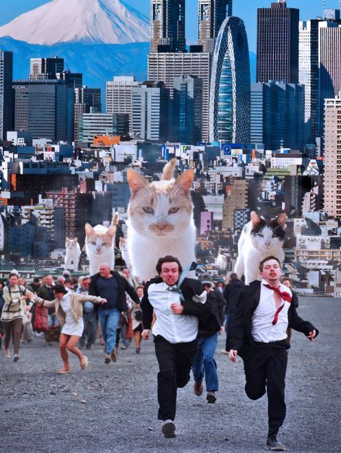 run for your lives cat photoshop battle