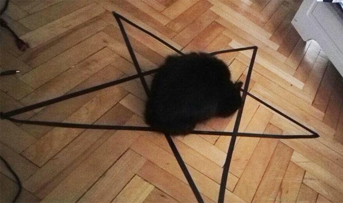 kitty black magic