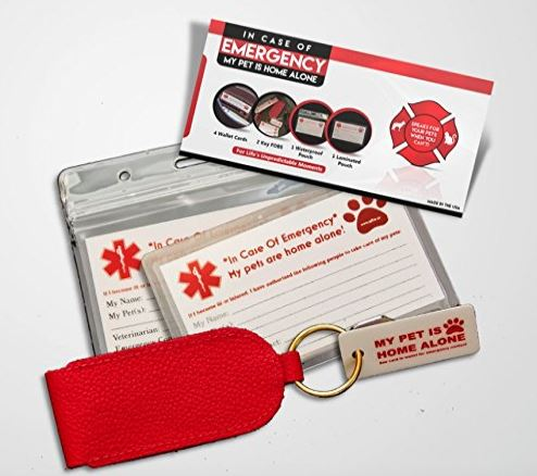 emergency pet care card kit