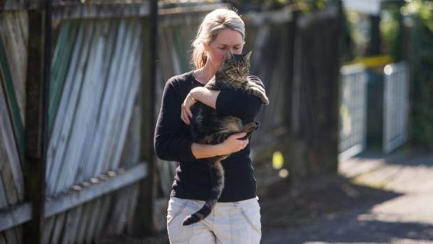 groombridge holding simba