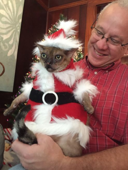 banjo the ugly cat christmas