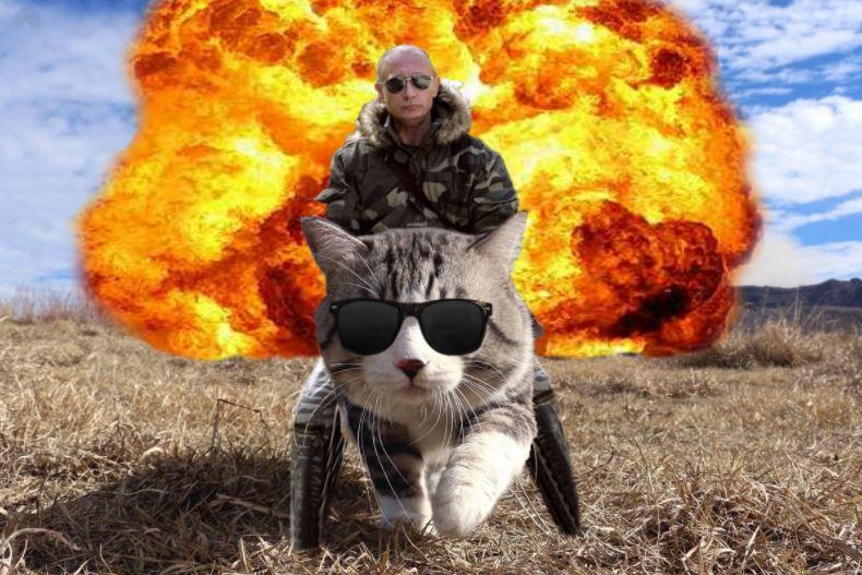 cat photoshop explosion 4