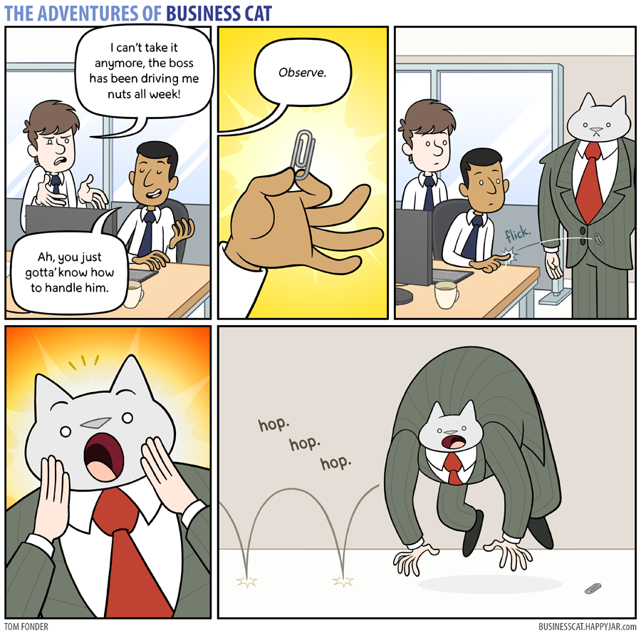 business cat distraction