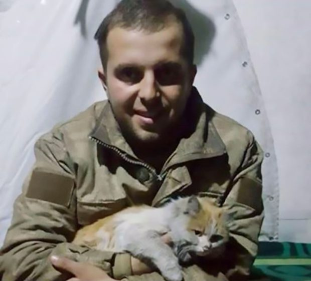 baris the cat rescued by turkish soldier