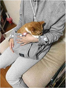 cat hoodie 2