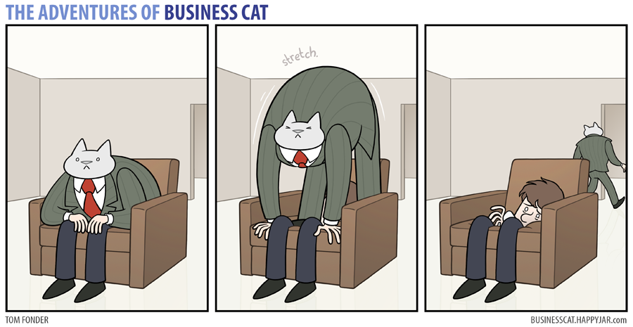 business cat stretch