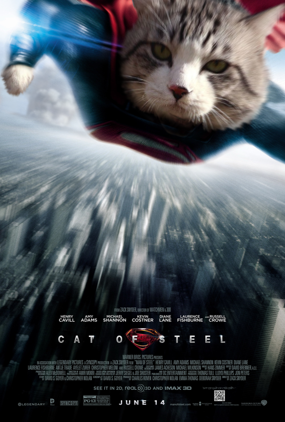cat photoshop explosion 6