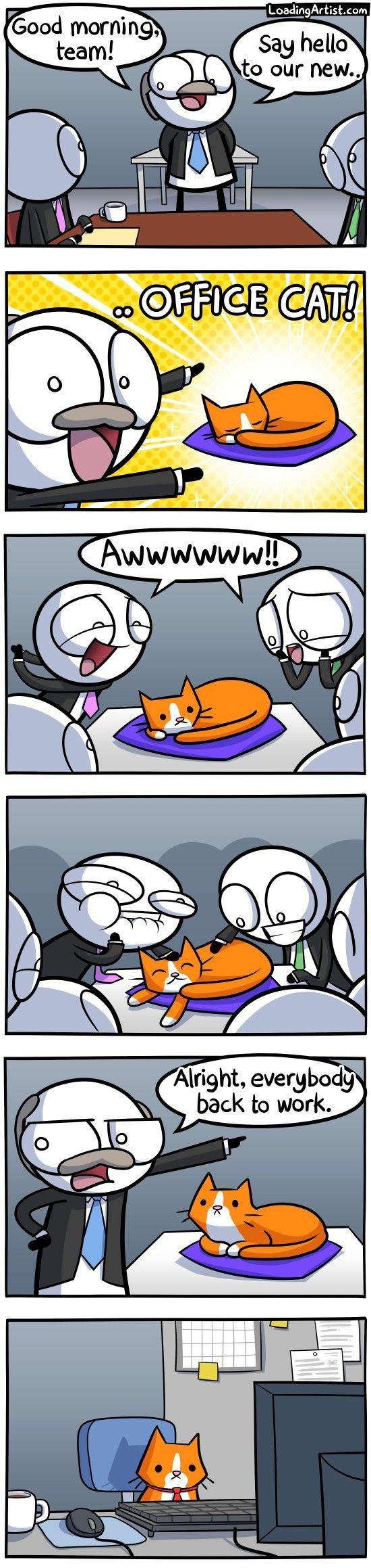 office cat comic
