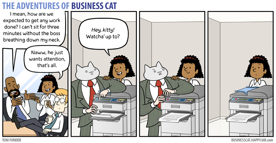 business cat attention