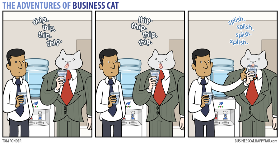 business cat sip