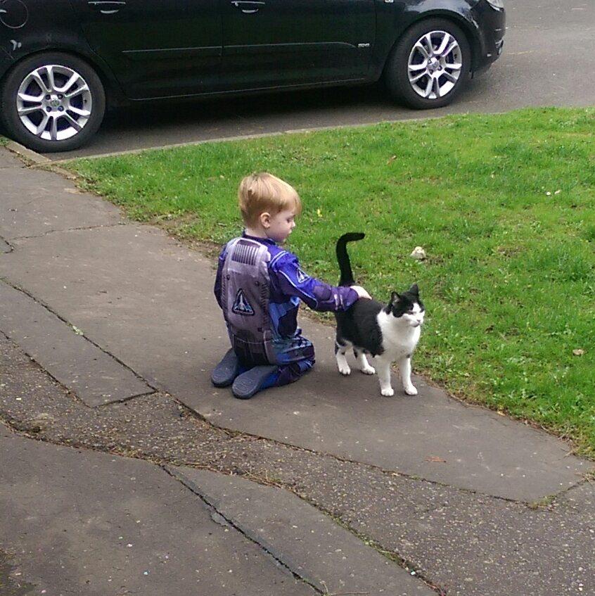 little boy finally pets neighbor cat