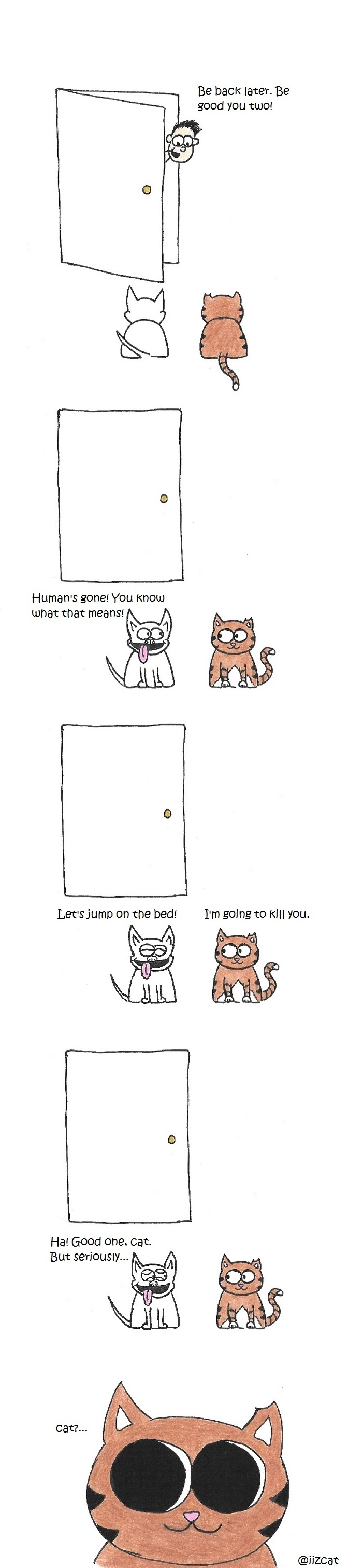 iizcat while the human is away the cat will play cat vs dog comic