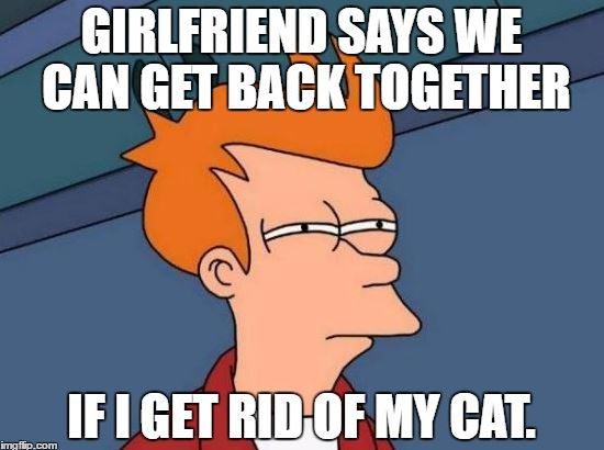 girlfriend wants boyfriend to get rid of cat