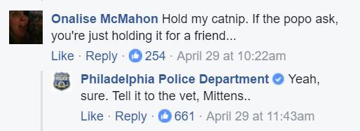police cat facebook comments 3