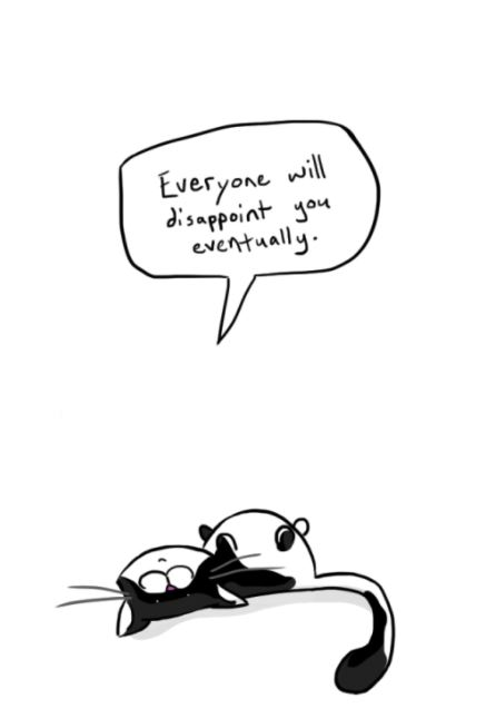 sad cat truths 4