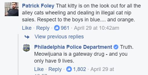 police cat facebook comments 1