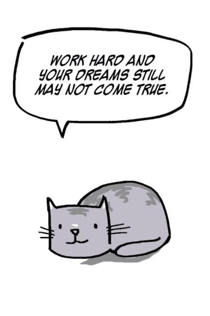 sad cat truths 2