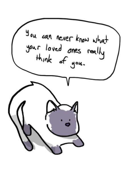 sad truth cats 3