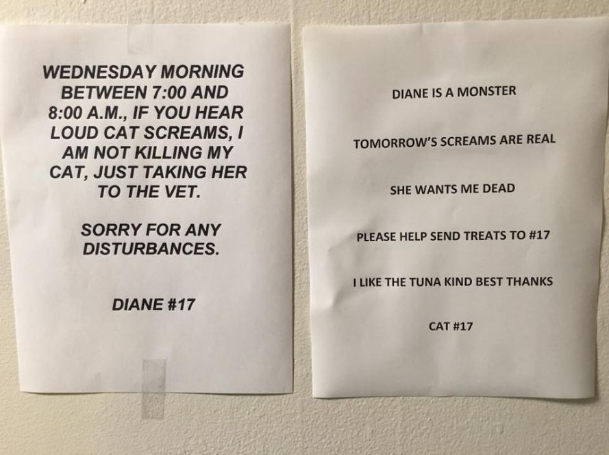 diane is a monster cat