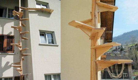 swiss cat ladder 4