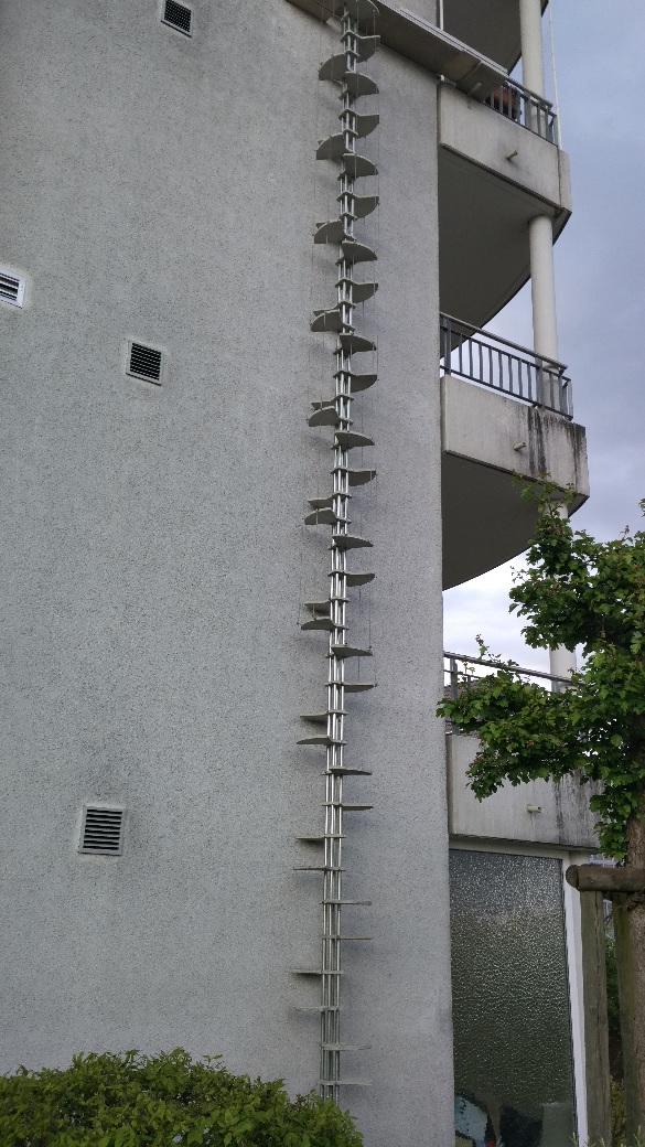 1 Point Safety >> These cat ladders found in Switzerland are pretty epic ...
